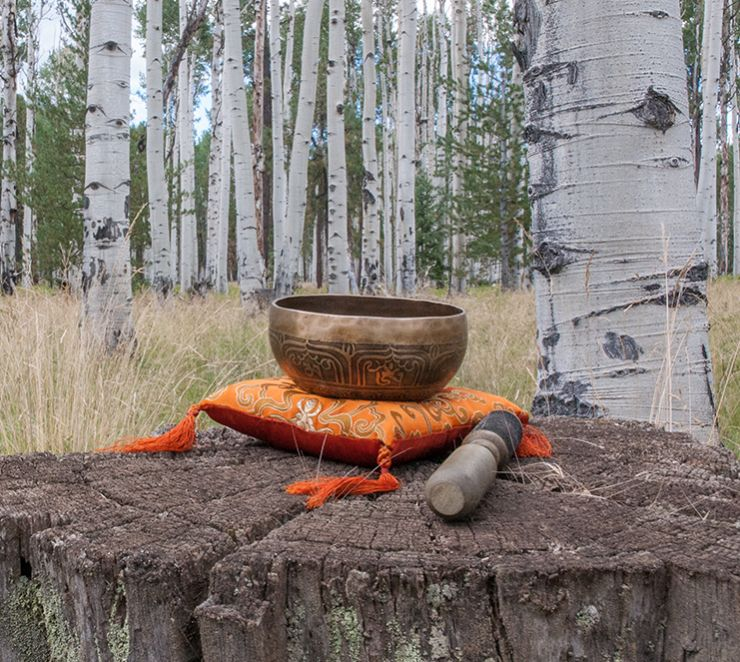 Meditation bell surrounded by aspen trees