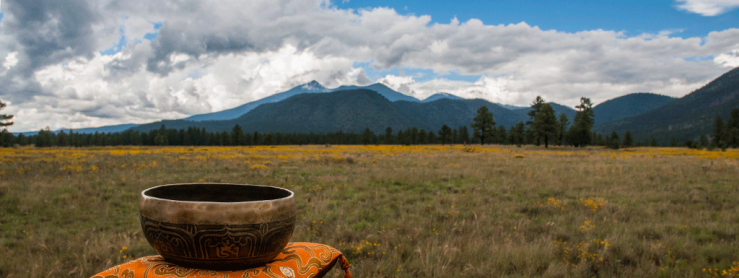 View of the San Francisco Peaks with sitting bowl in foreground